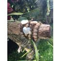 Pulsera elástica piedras naturales colores de otoño corazón de nácar